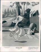 Duck flies coop press photo