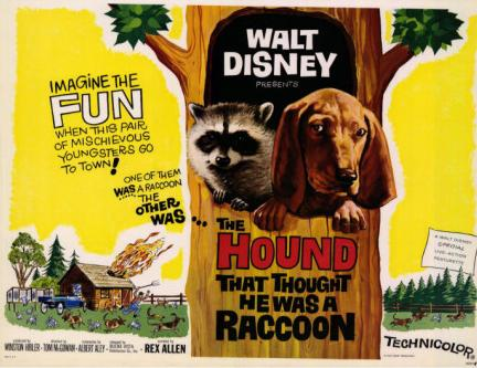 File:The Hound That Thought He Was a Racoon.jpg