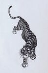 Shere Khan-bill Peet04
