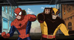 Ultimate-spider-man-wolverine02