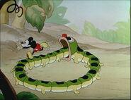 Mickey's Garden-57