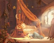 Tangled concept 3