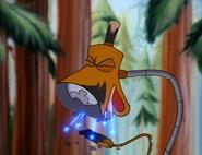 Lampy koffing