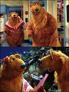 Character.ursa