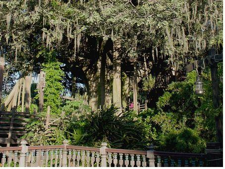 File:Treehouse at Magic Kingdom.jpg