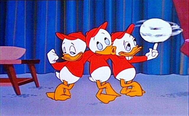 File:Walt-Disney-Screencaps-Huey-Duck-Dewey-Duck-and-Louie-Duck-walt-disney-characters-29213488-2560-1576.jpg