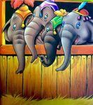 ElephantsWonderfulWorldReading