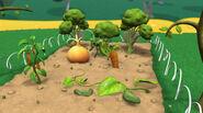 Vegetables grown normal