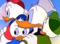 Donaldboys
