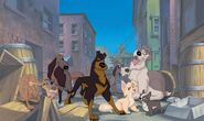 Lady and the Tramp 2 Promotional Images - 7