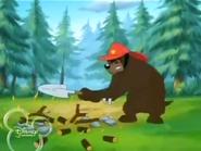 RAF Bear28