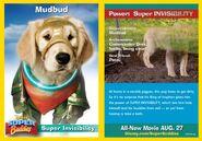 Mubbud Card