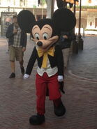 Mickey in SMB