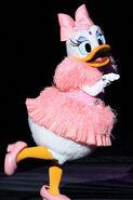 Daisy Duck BBB