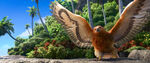 Moana Trailer Maui Bird