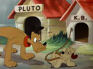 Pluto's Kid Brother 1