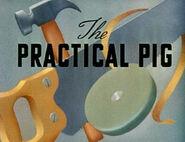 Ss-practicalpig