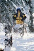 2002 snow dogs 002