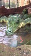 Crocodilerfc