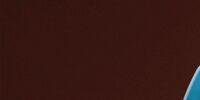 The Cheetah Girls: One World (soundtrack)