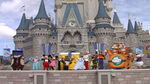 Cinderella Surprise Celebration WDW