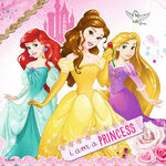 Disney-Princesses-disney-princess-39241465-1024-1024