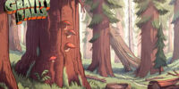 Gravity Falls Forest
