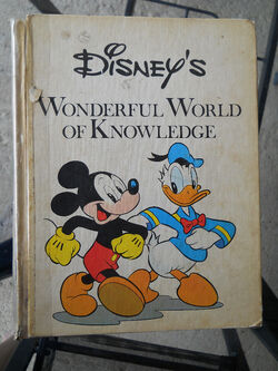 1357128952 468863989 1-Disneys-Wonderful-World-of-Knowledge-Sinoville