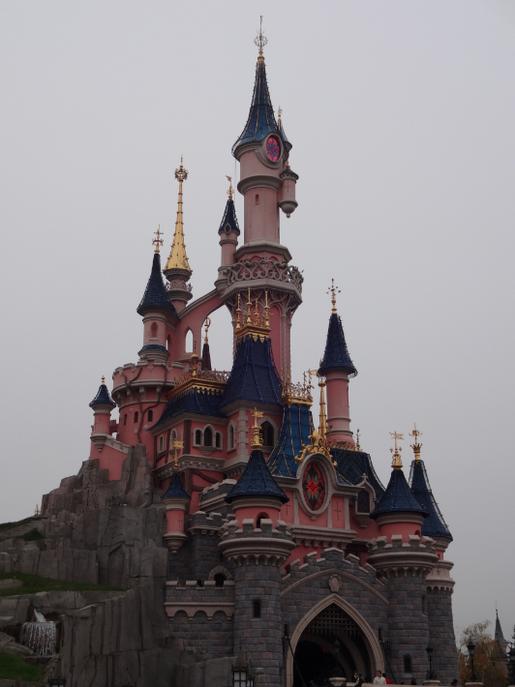 Le Château de la Belle au Bois Dormant  Disney Wiki  Fandom powered