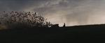 Maleficent-(2014)-203