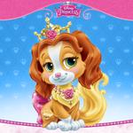 Palace Pets - Teacup