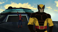 UltimateSpiderMan Wolverine
