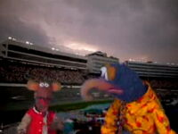 Muppet spotlight 8