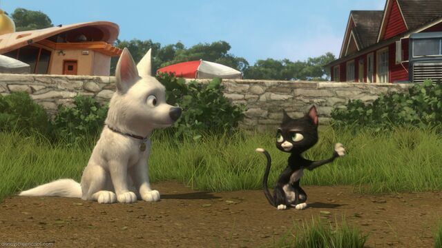 File:Bolt-disneyscreencaps com-7594.jpg