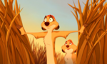 Timon, Lion King 3 024
