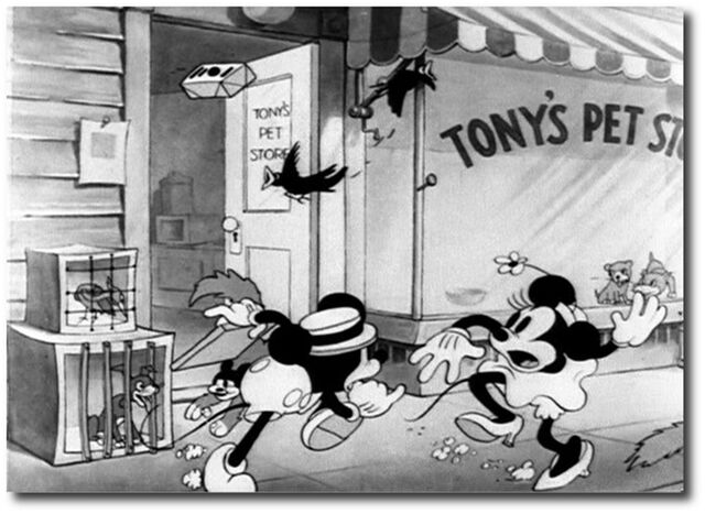 File:19512.jpg
