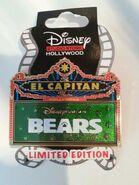Bears pin