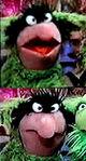 Green Frackle 2 MOPATOPS copy