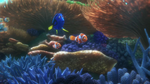 Finding Dory 58