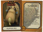 Puffer Pig Info