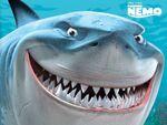 Finding Nemo(13)