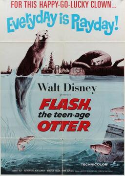1965-flash-1