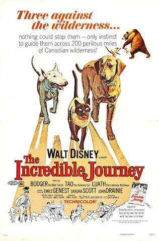 File:The Incredible Journey.jpg