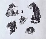 Shere Khan-bill Peet02