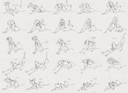 Pongo Animation