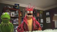 Muppets-com33
