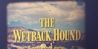 The Wetback Hound