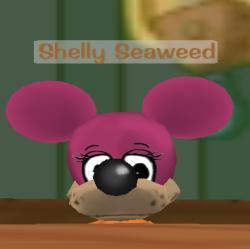 File:Shelly Seaweed.jpg