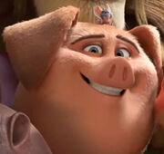 Frantic Pig