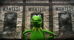 MMW Kermit Wanted-poster